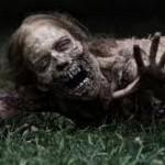 Walking Dead is My Favorite New TV Show